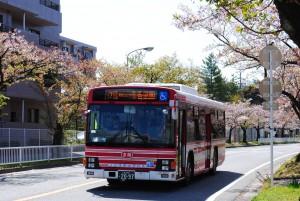 130408Sugiyama-Gohonmatu2